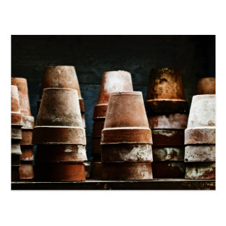 Cartão Postal Potes da planta do Terracotta