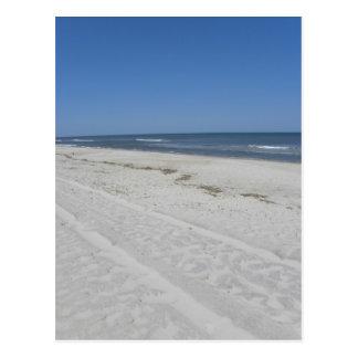 Cartão Postal Praia de Assateague