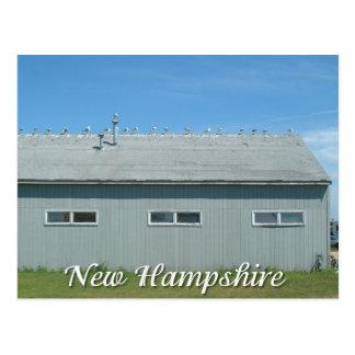 Cartão Postal Praia de Hampton, gaivotas de New Hampshire