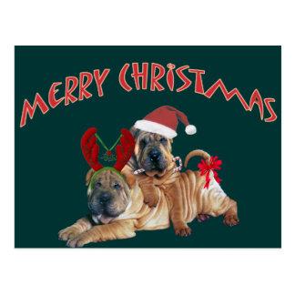 Cartão Postal Presentes do Feliz Natal de Shar-pei do chinês
