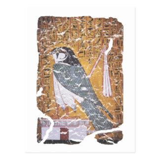 Cartão Postal Preto do falcão