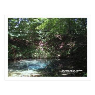 Cartão Postal Primavera azul na argila vermelha, Tennessee