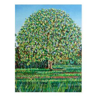 Cartão Postal Primavera da árvore do arco