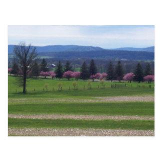 Cartão Postal Primavera em Gettysburg