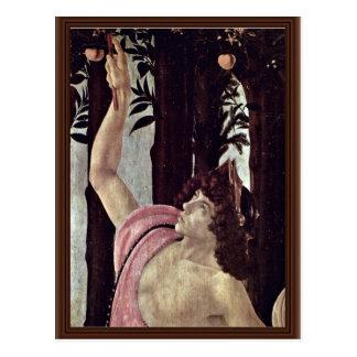 Cartão Postal Primavera (Primavera), por Botticelli Sandro