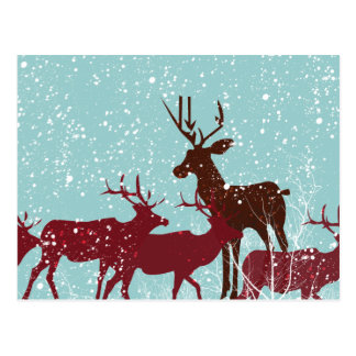 Cartão Postal Primeira neve da floresta