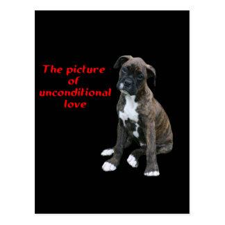Cartão Postal Pugilista:  Imagem do amor incondicional