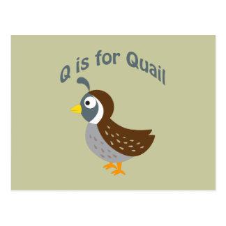 Cartão Postal Q é para codorniz