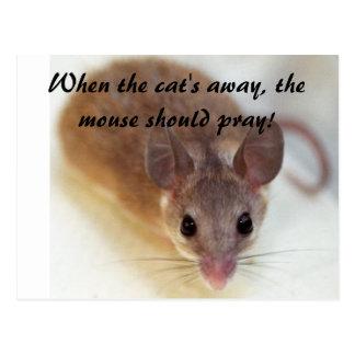 Cartão Postal Quando o gato ausente…