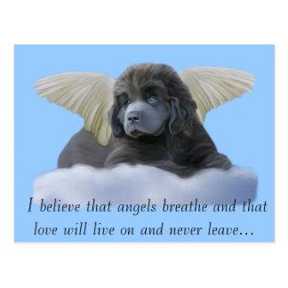 Cartão Postal ~ que cinzento do anjo eu acredito