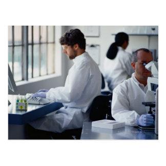 Cartão Postal Químicos que trabalham em um laboratório