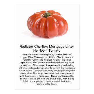 Cartão Postal Radiador Charlie - tomate da herança do elevador