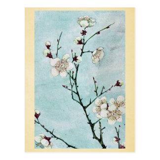Cartão Postal Ramos da ameixa com flores Ukiyo-e.