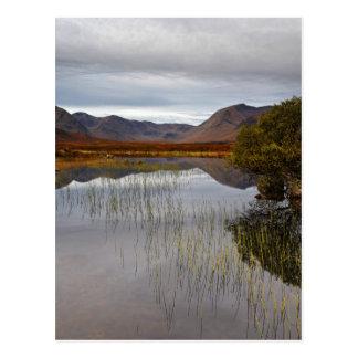 Cartão Postal Rannoch amarra, Scotland