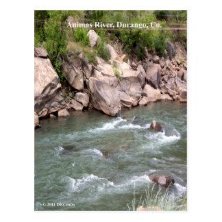 Cartão Postal Rapids do rio dos Animas