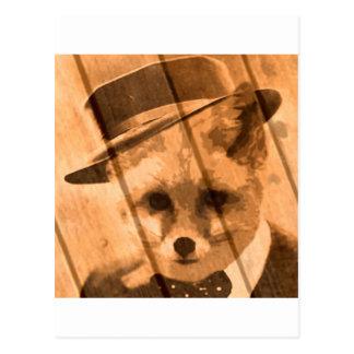 Cartão Postal raposa em um chapéu