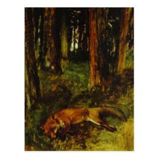 Cartão Postal Raposa inoperante que encontra-se no Undergrowth