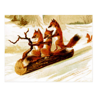 Cartão Postal Raposas que Sledding através da neve em um