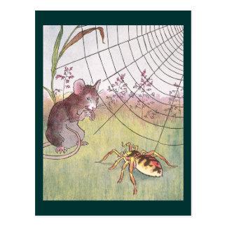 Cartão Postal Rato, aranha e Web no prado
