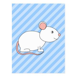 Cartão Postal Rato branco
