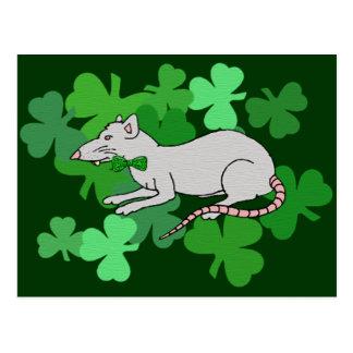 Cartão Postal Rato do dia de St Patrick