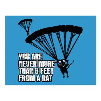 Cartão Postal Rato engraçado