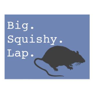 Cartão Postal Rato mole grande do regaço