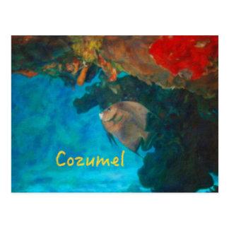 Cartão Postal Recife de corais de Cozumel