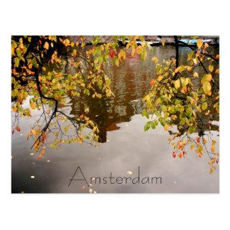 Cartão Postal Reflexão de Amsterdão