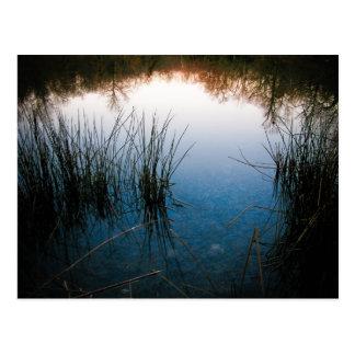 Cartão Postal Reflexões da lagoa
