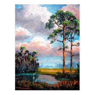 Cartão Postal Região selvagem de Florida