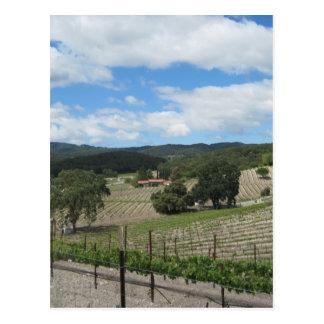 Cartão Postal Região vinícola de Templeton ao fim de maio