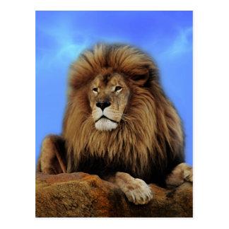 Cartão Postal Rei do leão em África