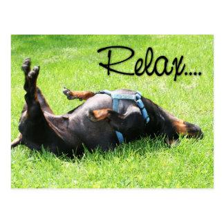Cartão Postal Relaxe obtêm o poço - Dachshund - Hoover