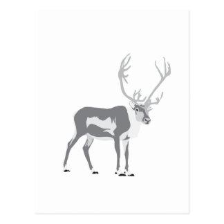 Cartão Postal Rena de DIY