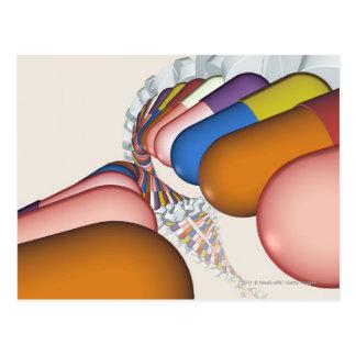 Cartão Postal Representação colorida de uma costa do ADN