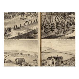 Cartão Postal Residências de John Turner, C.A. Shelton, H Wilsey