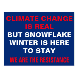 Cartão Postal Resistência do inverno do floco de neve das
