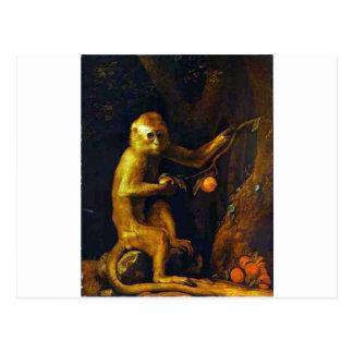 Cartão Postal Retrato de um macaco por George Stubbs