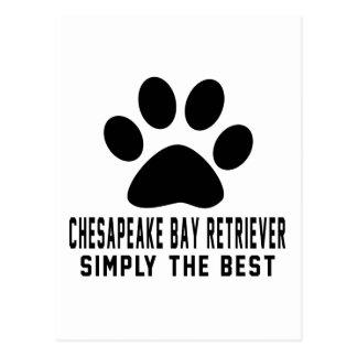 Cartão Postal Retriever de baía de Chesapeake simplesmente o