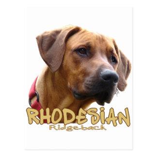Cartão Postal Rhodesian Ridgeback