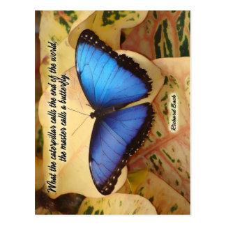 Cartão Postal Richard Bach-The Caterpillar