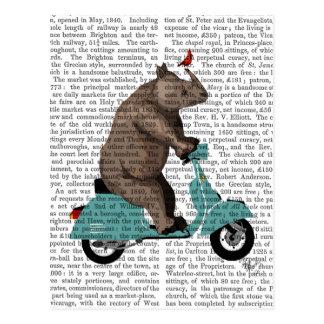 Cartão Postal Rinoceronte no Moped