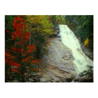 Cartão Postal Ripley cai a cachoeira branca do outono das