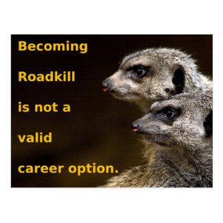 Cartão Postal Roadkill tornando-se não é uma opção válida da