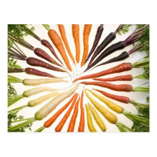 Cartão Postal Roda de cor da cenoura