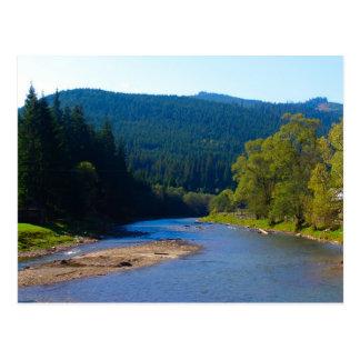 Cartão Postal Romania, Moldova, rio entre as florestas do pinho