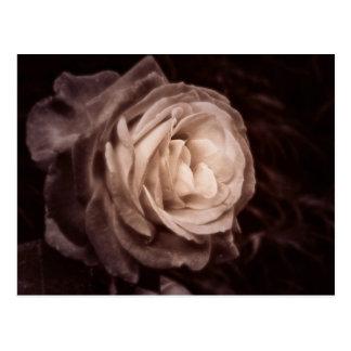 Cartão Postal Romantica- que isto aumentou diz o amor