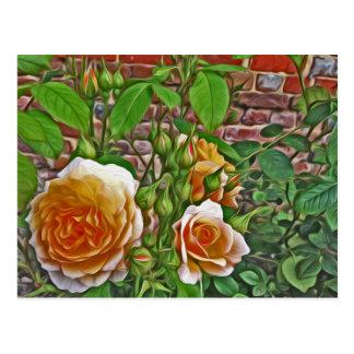 Cartão Postal Rosa amarelo no jardim do Hampton Court