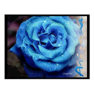 Cartão Postal Rosa do azul
